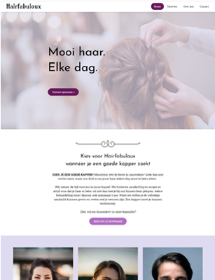 website voorbeeld template 3