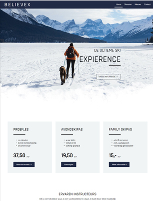 website voorbeeld template 5